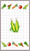 Utěrka  40x70cm kukuřice